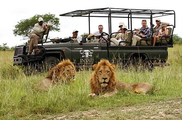 Experience an open air vehicle safari in Kruger National Park next July on a spectacular South Africa Tour featuring Swaziland.