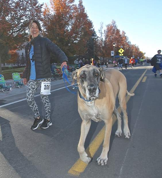 Toni Anderson runs the 2-mile event last year with her Great Dane 'Earl.'