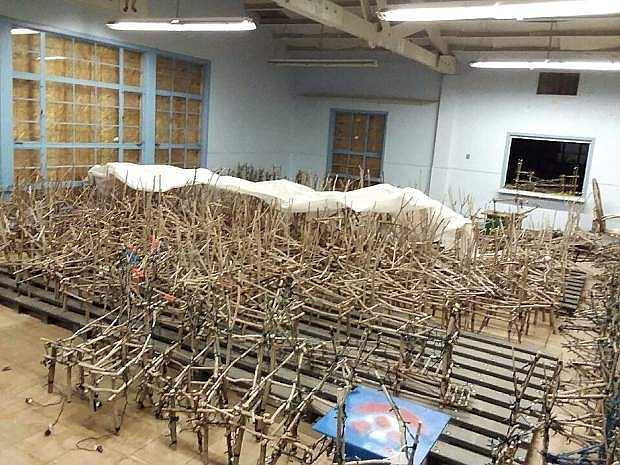 The willow reindeer are ready to be checked.