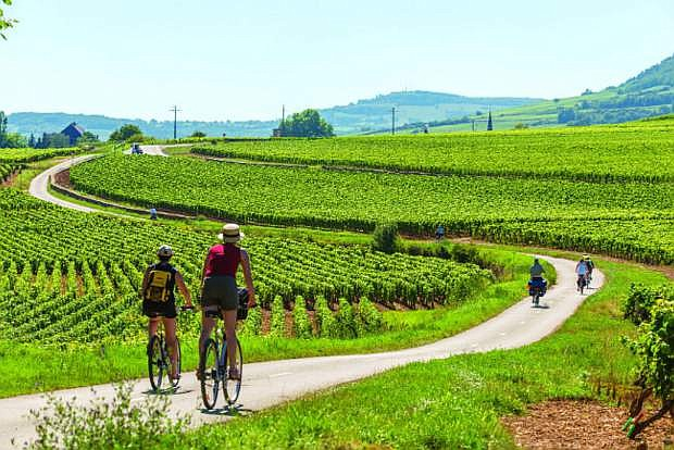 You will have the opportunity to enjoy biking in the Burgundy vineyards.