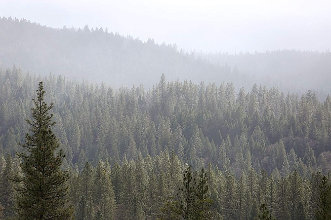 Misty rain clouds lift from the hills surrounding Nevada City and Grass Valley, Calif., on Tuesday. Carson City could see similar conditions before the weekend is over, according to the National Weather Service.