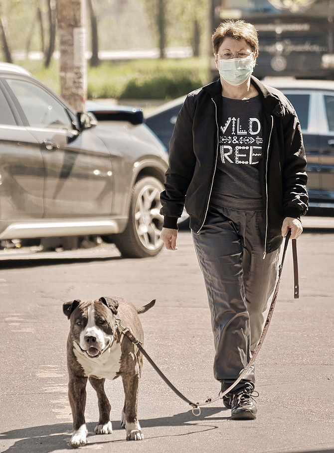 Walking your dog around the block is one activity you can do to benefit your physical and mental health.
