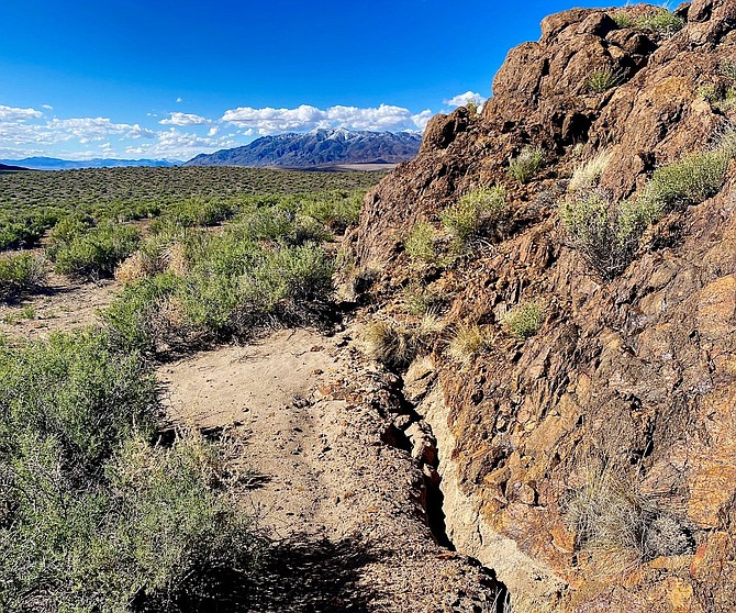 The surface rupture mapped by the University of Nevada, Reno field teams extends for about six miles west of Highway 95. Only minor sur-face cracking was observed east of Highway 95 in the vicinity of the ep-icenter.